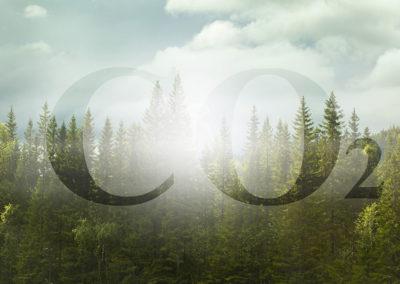 CO2-Bepreisung nach BEHG